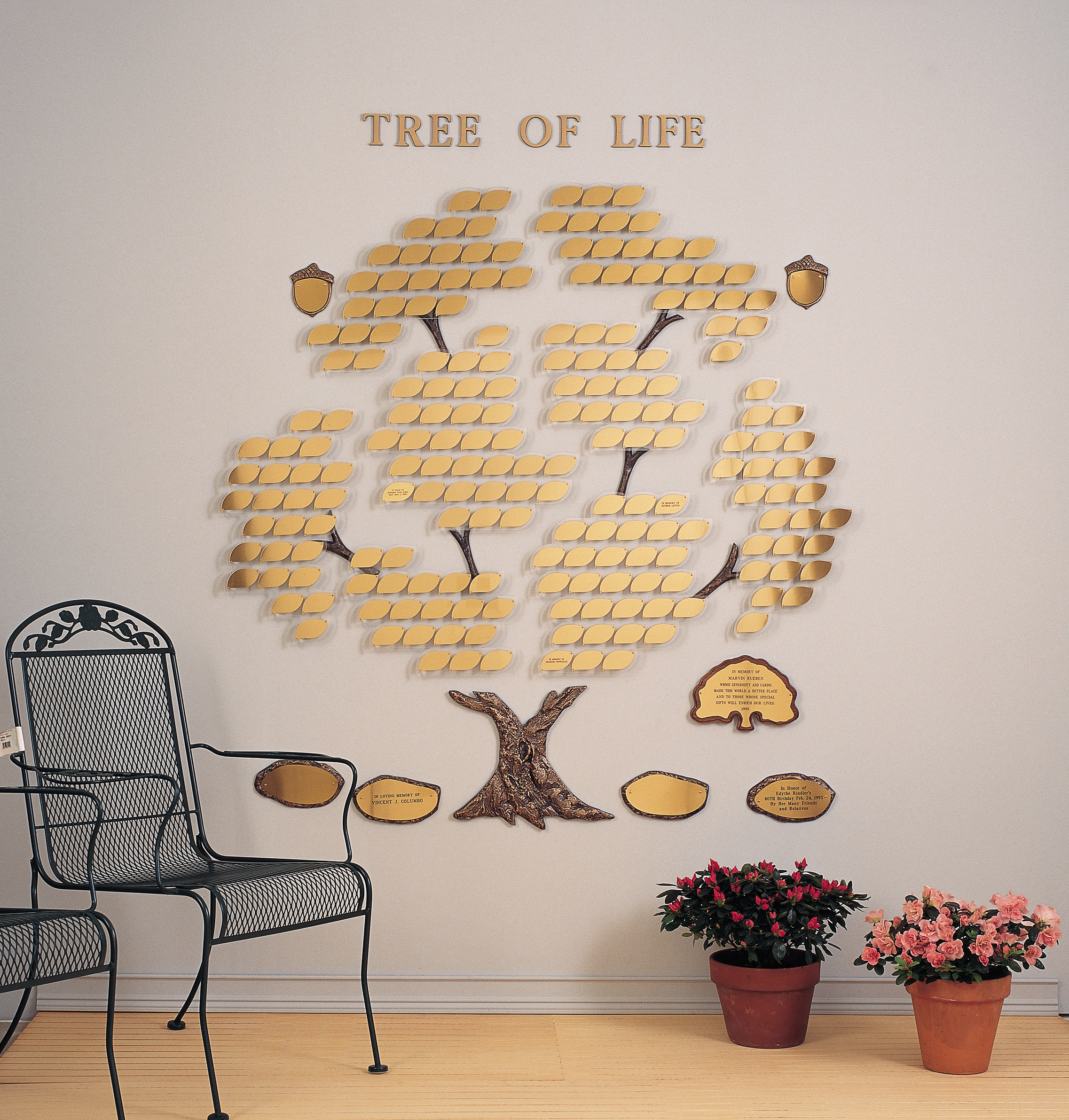 Trees of Life - Growing Tree 200